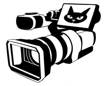 Pacha Video - Photographe de portraits - Montbrison