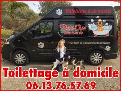 Pluto'Chic - Toilettage à Domicile - Toilettage de chiens et de chats - Vaison-la-Romaine