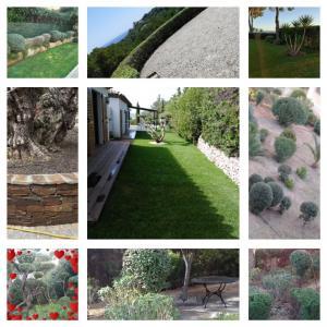 Jardins Du Sud - Aménagement et entretien de parcs et jardins - Sainte-Maxime