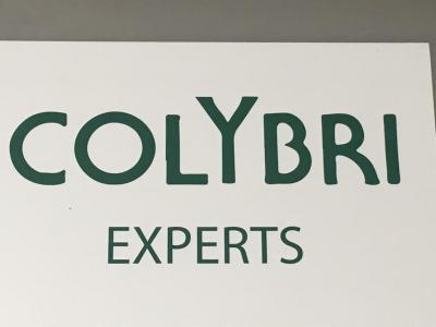 Sas Colybri Experts - Expert en assurance - Annecy