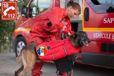 Service Départemental Incendie Et Secours SDIS - Sapeurs-pompiers - Vannes