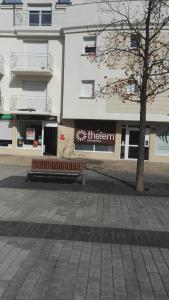 Thelem Assurances - Agent général d'assurance - Fleury-les-Aubrais