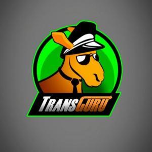 TransGuru - Transport express - Corbeil-Essonnes