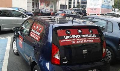 Urgence Nuisibles - Dératisation, désinsectisation et désinfection - Paris