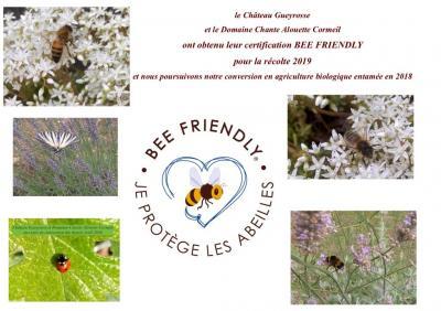 Vignobles Delol Yves EARL - Producteur et vente directe de vin - Libourne