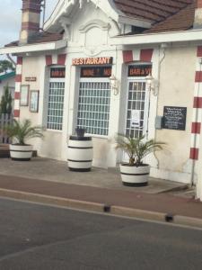 Wine Not - Restaurant - Arcachon